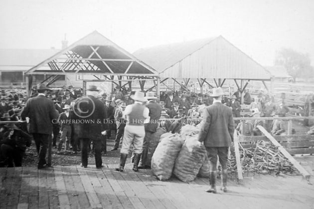 18. Land sale, Camperdown saleyards, c.1930