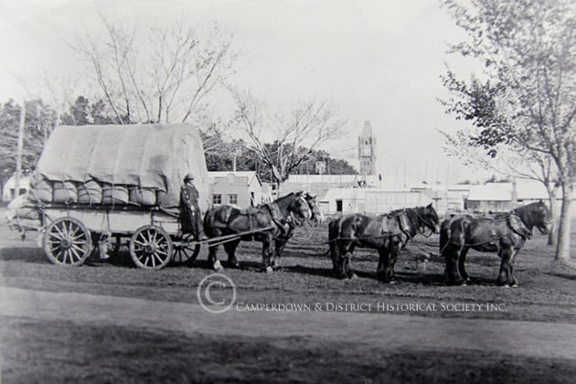 539. Wool Wagon, Camperdown, c.1910